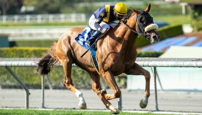 2021 Eddie Read Stakes Odds and Predictions
